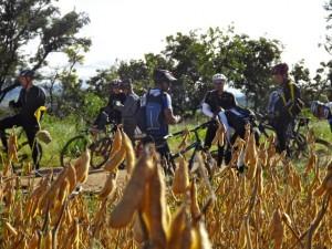 O agronegócio e o turismo radical