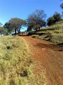 Descendo para a Mata do Ribeirão Mata burrinho